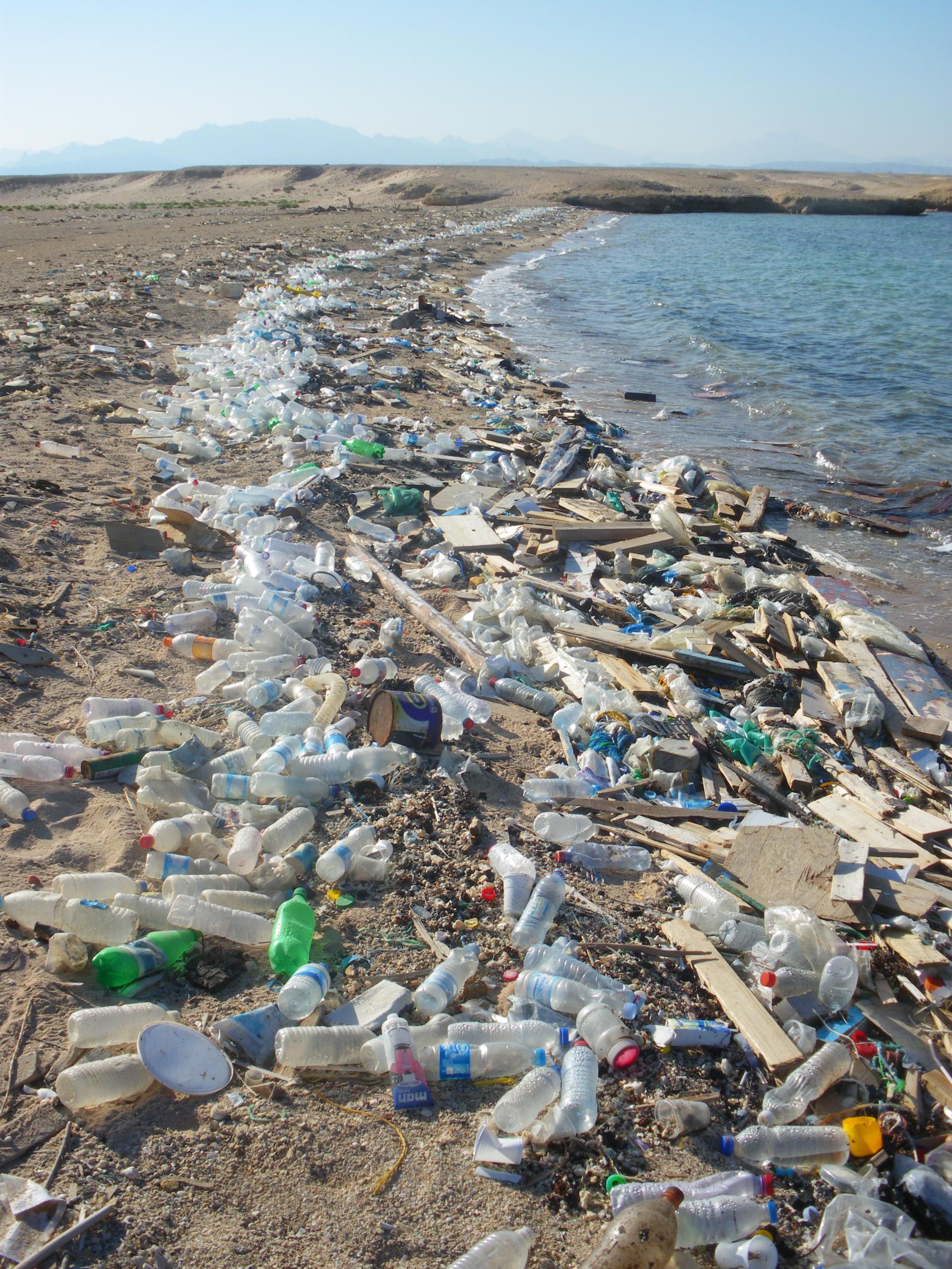 Déchets plages  Sciencesenviro  Les sciences et l