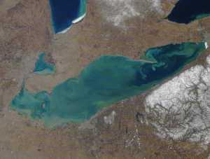 Lac Érié MODIS