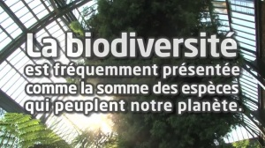 Image article biodiversité