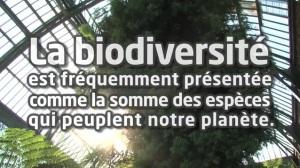 Image article biodiversité