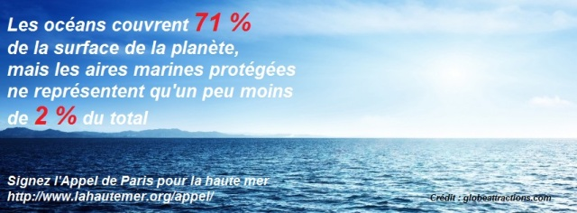 sea-ocean-water-sky-horizon-nature-315x851 texte appel de Paris pour la haute mer