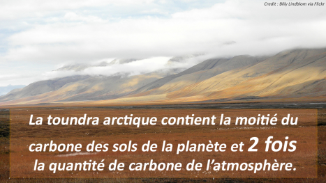 ToundraArctique+texte